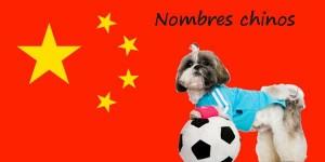 Chinese Hondennamen